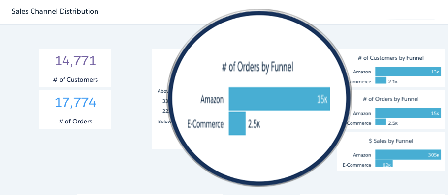 Conversion Channel Specific Reporting – Amazon, Shopify, Sales Funnel