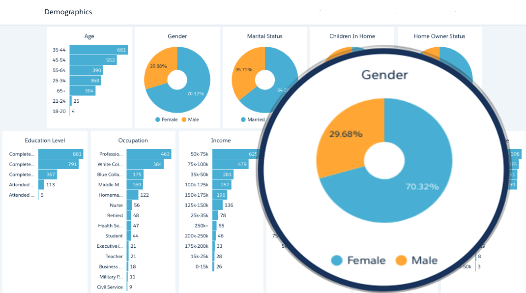 Customer Demographics – 11 Appended Demos