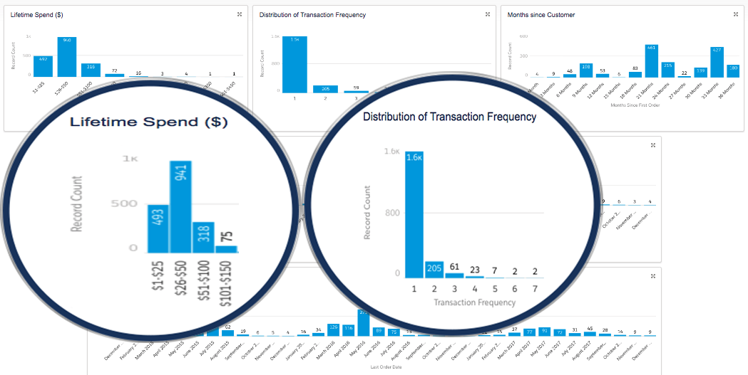 Customer Life Cycle Dashboard – The Progression of the Customer Relationship From Initial Purchase to Today.