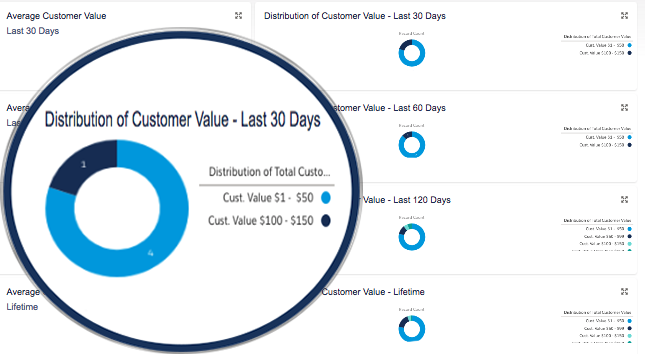 Distribution of Total Customer Value Reports