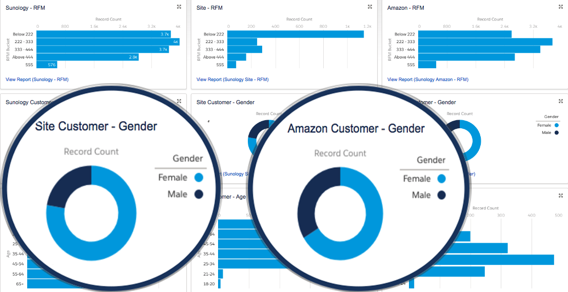 Ecom Site vs. Amazon Comparison Reporting
