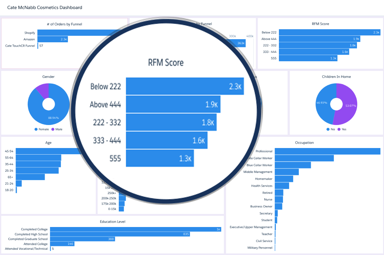 RFM Reporting/Dashboards – Recency, Frequency, Monetary Value of Customer Database